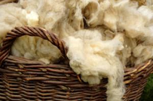 unprocessed-wool